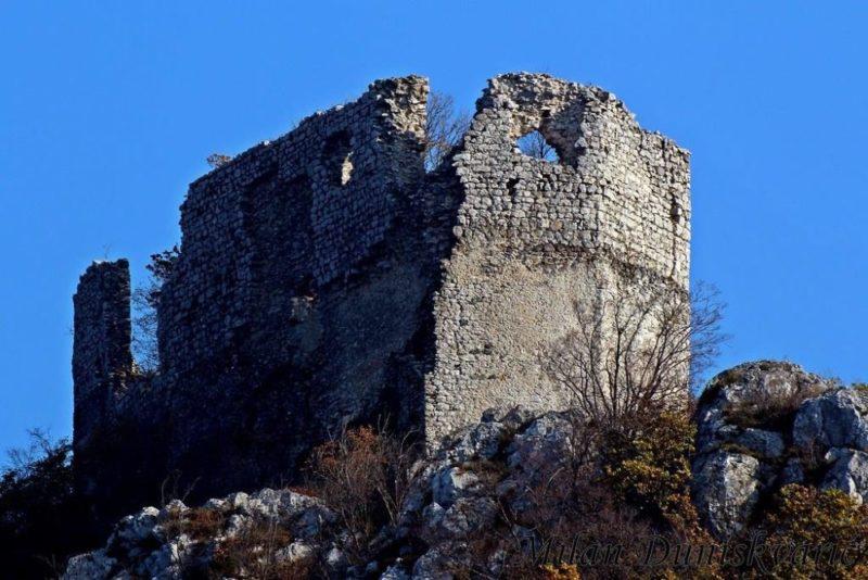 Ostatak zidina stambenog dijela Okić grada.